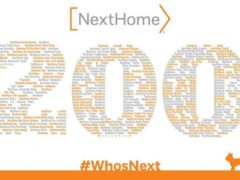 NextHome Gulf Coast's Palm Harbor location awarded #200